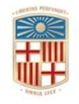 Barselona Üniversitesi